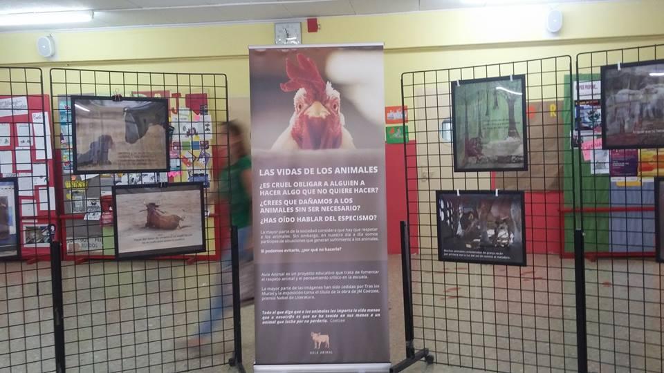 Exposición en el Pablo Gargallo