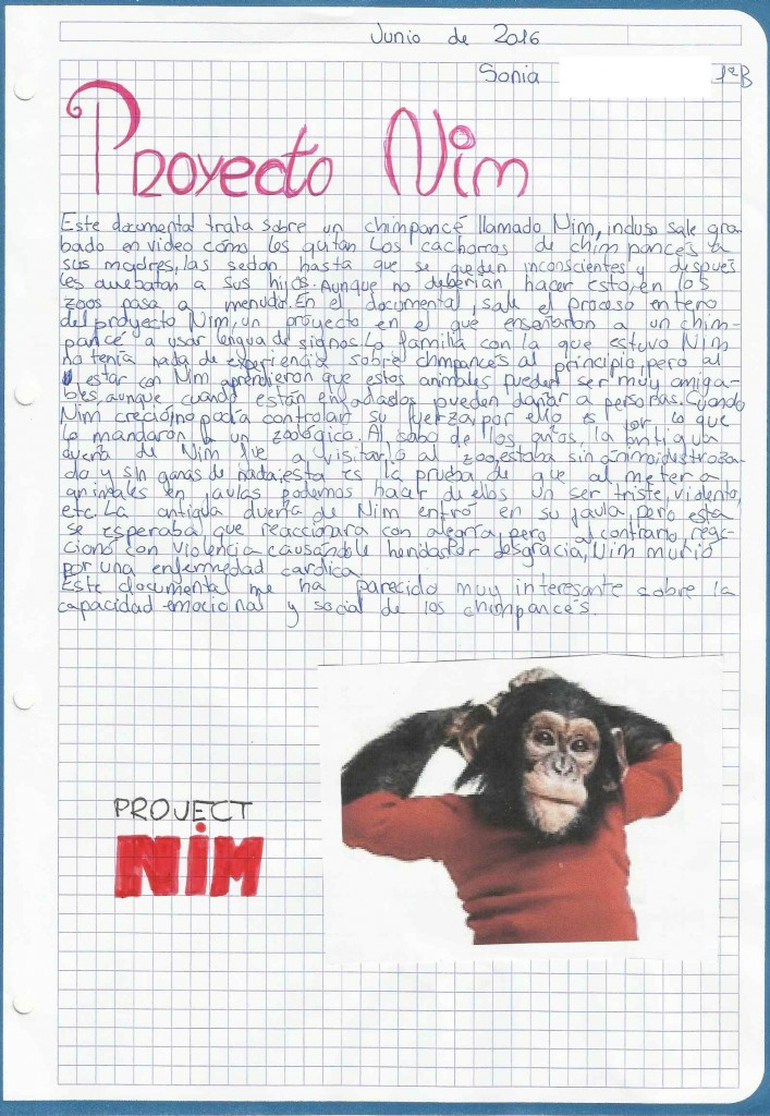 Poyecto Nim