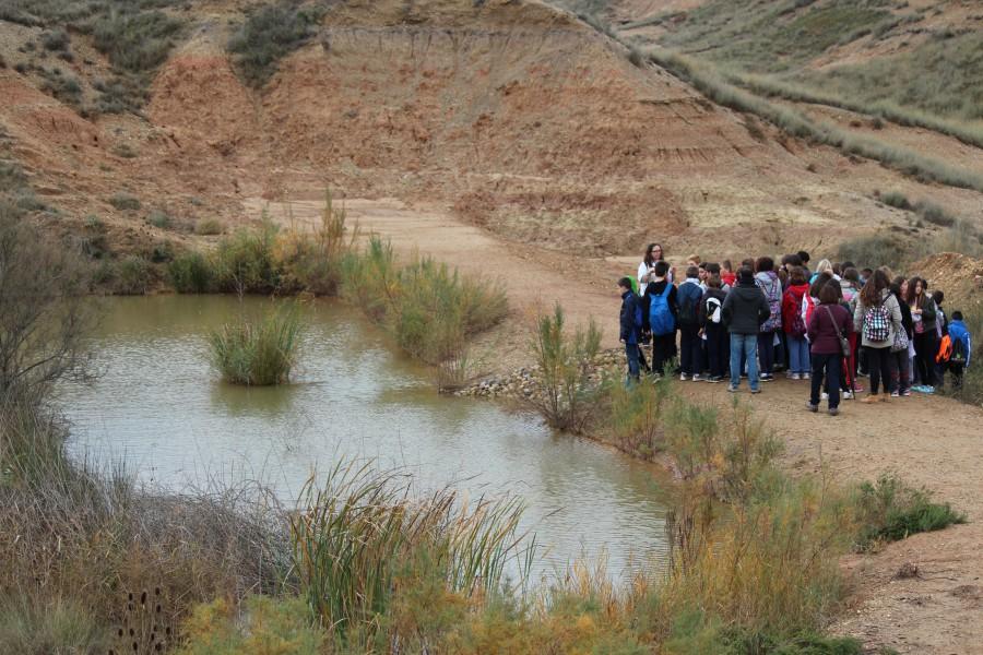Visita-CREAMAgua-humedal-Albalatillo-e1445590328456